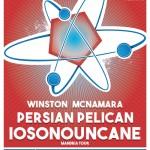Intervista a Persian Pelican per Molecola Fest#1